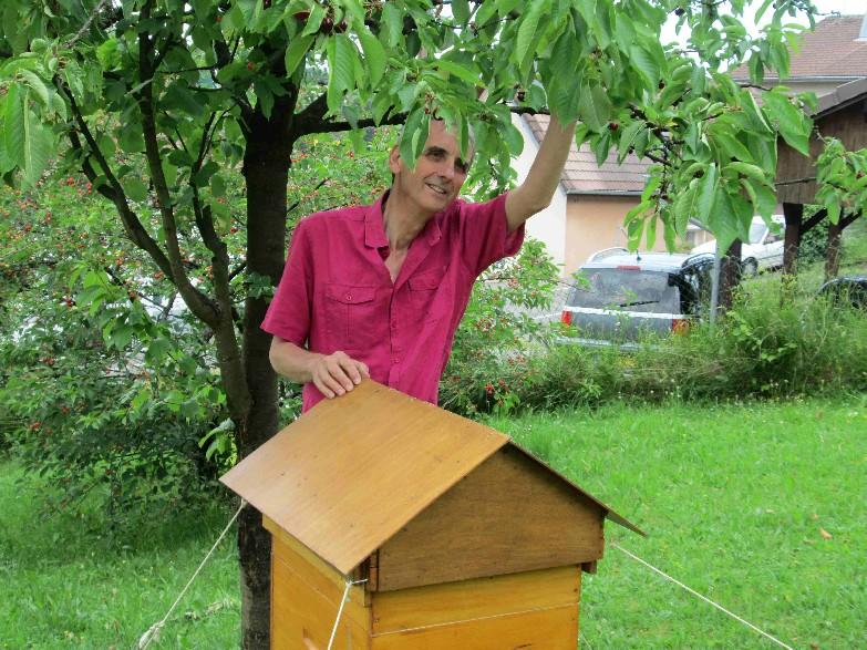 Auprès de la ruche
